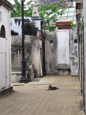 Recoleta cemetery 5