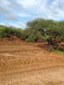 Chaco road Paraguay-Bolivia