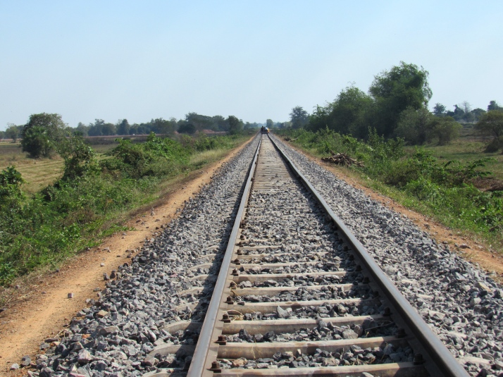 Bamboo train track without a cow